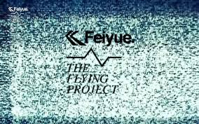 The Flying Project de Feiyue